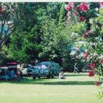 Tents & Campervans
